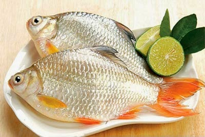 cá mè nấu gì ngon nhất?