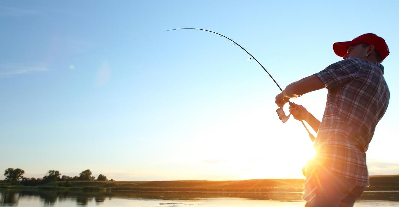 Cách làm mồi câu cá trê sông - 1