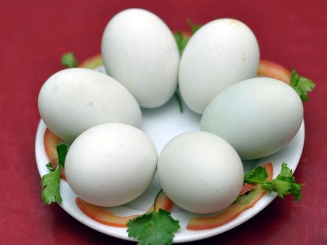 Trứng vịt lộn kỵ với cái gì - 1