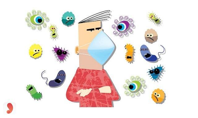 quả bòn bon nâng cao hệ miễn dịch
