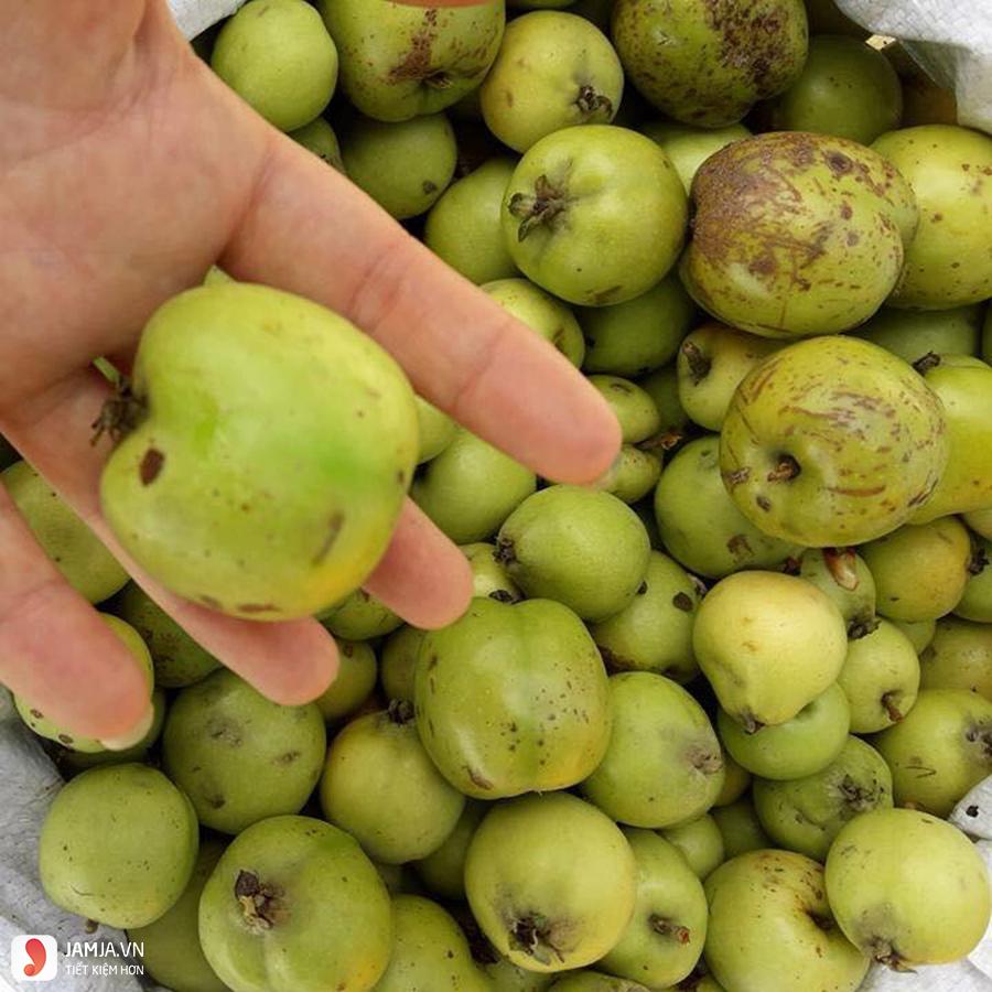 Cần lưu ý gì khi làm giấm táo mèo
