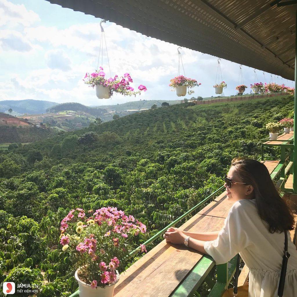 Mê Linh Coffee Garden - 3