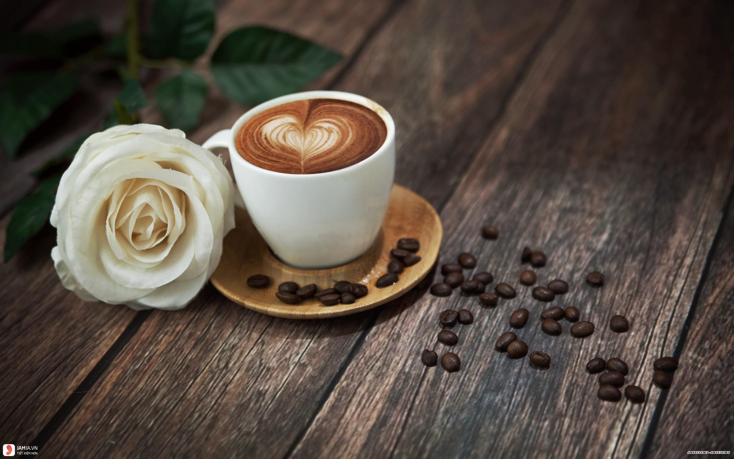 Củi coffee 3