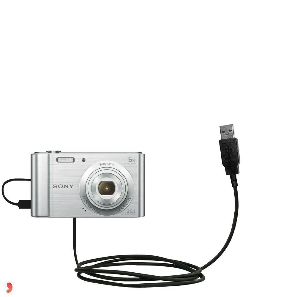 Sony DSC W810 2