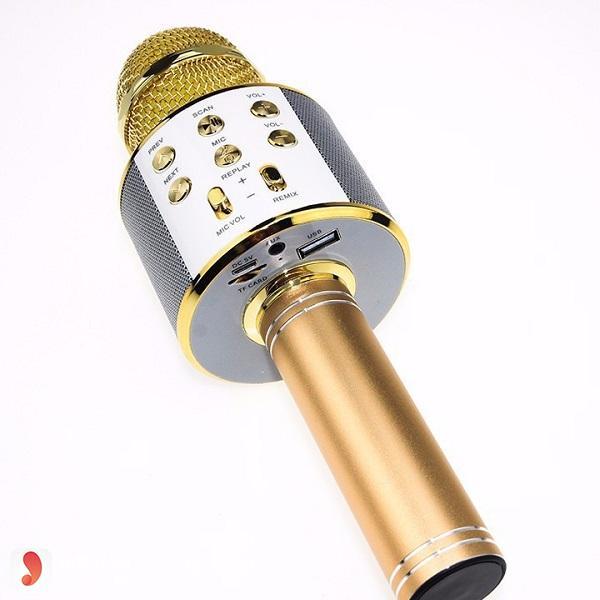 Micro karaoke Bluetooth WS-858