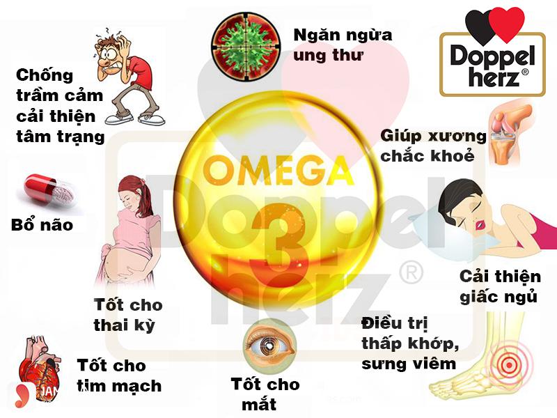 Tác dụng của dầu cá Omega 3