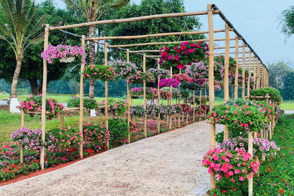 vườn hoa Ecopark