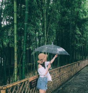 Sư Tử Lâm - Tô Châu. Đến Tô Châu mưa nguyên ngày. Thật may là vẫn vớt vát được vài cái ảnh