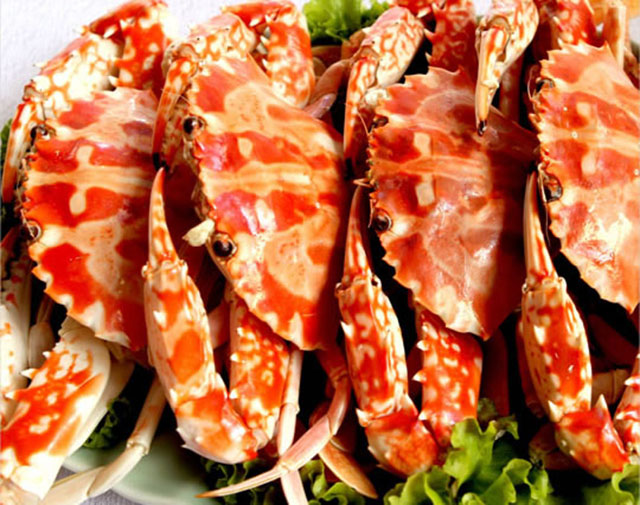 Hải sản Quy Nhơn nổi tiếng tươi ngon