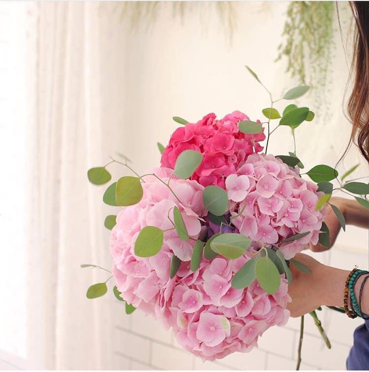 Hoa ngày 20/11, Hoa cẩm tú cầu